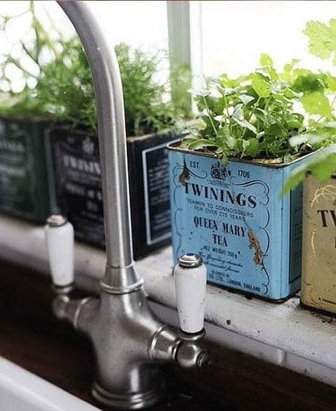 decoration cuisine plantes aromatiques