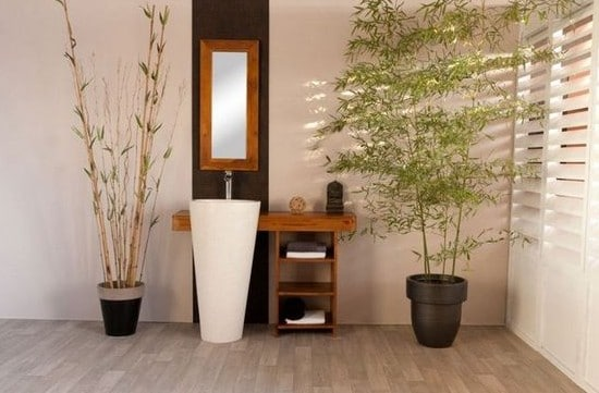 des plantes dans ma salle de bain plantes et d co. Black Bedroom Furniture Sets. Home Design Ideas