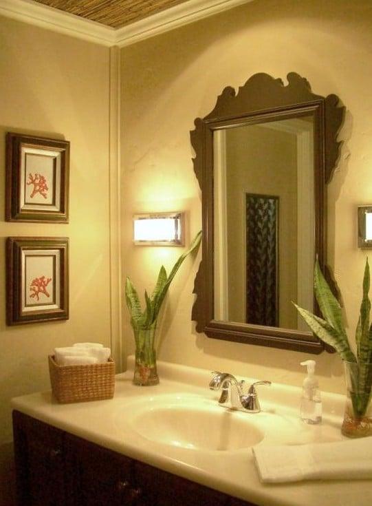 des plantes dans ma salle de bain plantes et d co. Black Bedroom Furniture Sets. Home Design Ideas