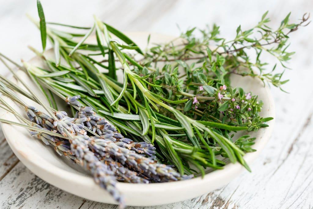 Les astuces pour produire des plantes aromatiques maison