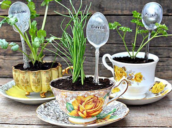 Des tasses qui deviennent de jolis pots