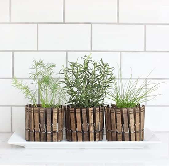 Une bonne idée recup pour planter vos plantes
