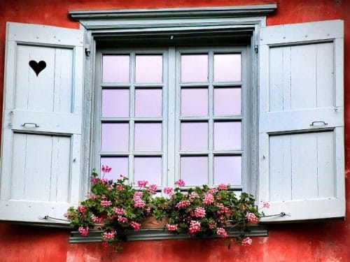Rebord de fenêtre agrémenté d'une jardinière fleurie