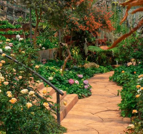 Allée de jaridn décorée avec plantes et pavés